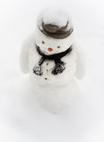 Sad Snowman Royalty Free Stock Photography