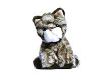 Sad soft toy kitten isolated on white background Stock Photos