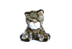 Sad soft toy kitten isolated on white background Royalty Free Stock Photography