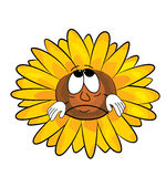 Sad sunflower cartoon Royalty Free Stock Photography