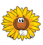 Sad sunflower cartoon Royalty Free Stock Photos