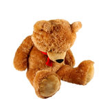 Sad Teddy Bear. Isolated on white background royalty free stock images