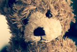 Sad teddy bear. Sad brown teddy bear portrait Royalty Free Stock Image