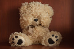Sad teddy bear Royalty Free Stock Photo