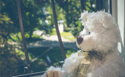 Sad Teddy bear Royalty Free Stock Image