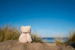 Sad Teddy Bear On The Beach Of The Baltic Sea Stock Photography