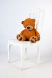 Sad teddy bear sits on a chair Royalty Free Stock Images