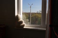 Sad, toy, white bear sits on the window sill and looks out the window. childhood has passed. an orphan. Orphanage. unhappy royalty free stock photo