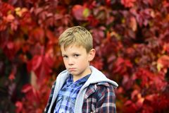 Sad and unhappy. Sad boy is blue in autumn. Small boy with sad look. Small child feel sad. Some days are just sad days. Sad and unhappy. Sad boy is blue in royalty free stock photography