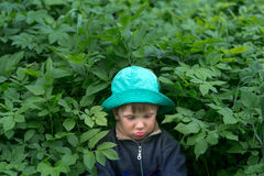 Sad, upset boy in the forest dark more often. Stock Images