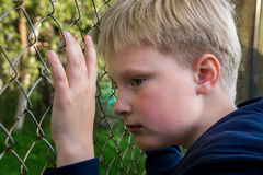 Sad upset boy Royalty Free Stock Image