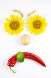 Sad vegetables face Stock Images