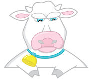 Sad white cow Royalty Free Stock Photos