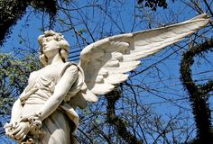 Sad white marble angel sculpture with open long wings across the frame and against a bright sunny blue sky. Sculpture hands holding a circle of flowers Royalty Free Stock Photo