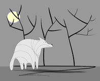 Sad wolf with shadow Royalty Free Stock Image