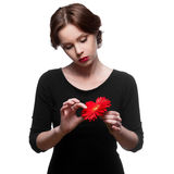 Sad woman in black dress with red flower Royalty Free Stock Image