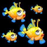 Sad yellow fish with antenna and blue fins, toon Royalty Free Stock Image