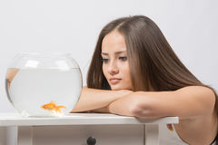 Sad young girl looking with indifference at the little goldfish Stock Photography