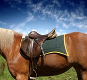 Saddle Royalty Free Stock Image