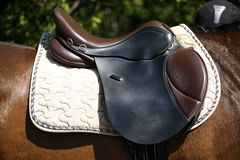 Saddle on a back of a horse Royalty Free Stock Photography