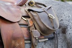 Saddle Bag on Horse. Saddle bag and part of saddle on blue roan horse stock photos