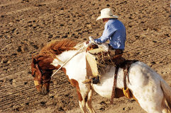 Saddle Bronc. Riding rodeo competition Royalty Free Stock Photography