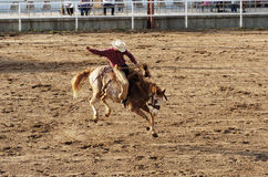 Saddle Bronc. Riding rodeo competition Stock Photo