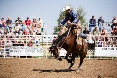 Saddle Bronc. A saddle bronc rider at a local rodeo. Herbert Rodeo 2007 royalty free stock image
