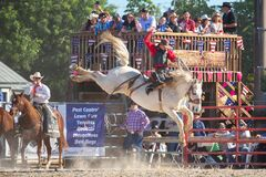 Free Saddle Bronc Riding, Bareback Riding. Bull Riding Competition. Cowboy Steer Wrestling, Team Roping, Tie-down Roping. Barrel Riding Stock Images - 170544274