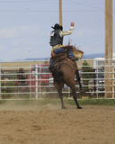 Saddle Bronc Riding. Young man riding a saddle bronc at a rodeo Stock Photo