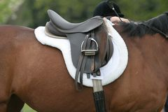 Saddle on Horse Royalty Free Stock Photography