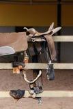 Saddle horse Royalty Free Stock Image