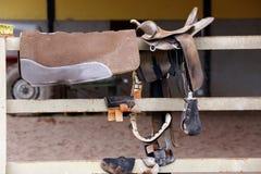 Saddle horse Stock Images