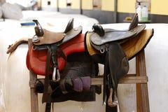 Saddle horse Royalty Free Stock Images