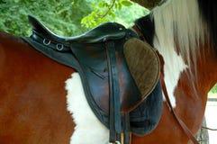 Saddle horse. Saddle Riding a horse closeup royalty free stock image