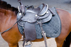 Saddle on Horse Stock Images