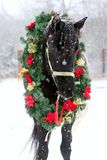Saddle horse wearing beautiful colorful christmas wreath at advent weekend in the fresh snow. Dreamy christmas image of asaddle horse wearing a beautiful wreath royalty free stock photo
