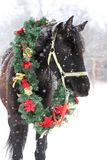 Saddle horse wearing beautiful colorful christmas wreath at advent weekend in the fresh snow. Dreamy christmas image of asaddle horse wearing a beautiful wreath royalty free stock images