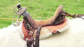 Saddle, Horses, Horseback Riding. Stock video of a horse saddle stock video