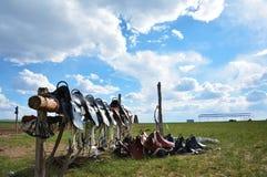 Saddle of the Hulunbuir Prairie royalty free stock image