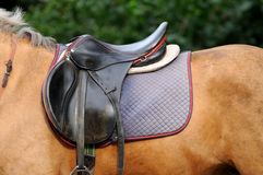 Saddle. Royalty Free Stock Images