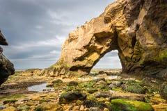 Saddle Rocks at Cullercoats Bay Royalty Free Stock Photo