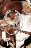 Saddle & Rope Stock Image
