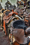 Saddle Sale. Rows of western saddles for sale at a horse show Stock Image