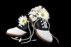 Saddle shoes with daisies Stock Image