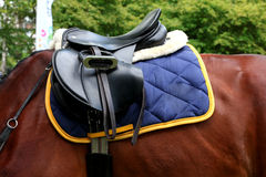 Saddle with stirrups on a back of a horse Royalty Free Stock Photo