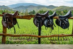 Saddle on wooden fence. In the horse farm stock photo