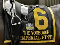 Saddlecloth imperiale di suggerimento da Fleetphoto fotografie stock
