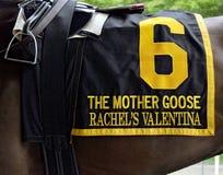 Saddleclothsöndag Rachels Valentina royaltyfri fotografi
