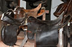 Saddlery Royalty Free Stock Images